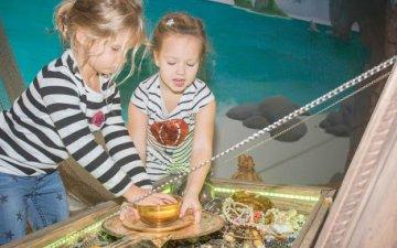 От каква възраст са разрешени ескейп стаите за деца?