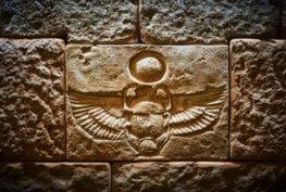 Стая Египет галерия на начална страница снимка  4
