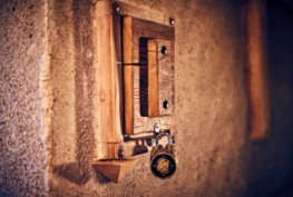 Стая Египет галерия на начална страница снимка  2