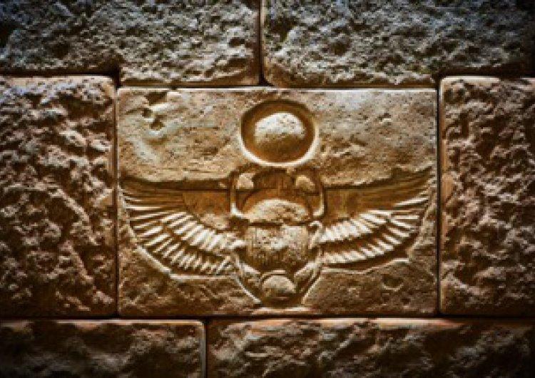 Стая Египет Галерия 4